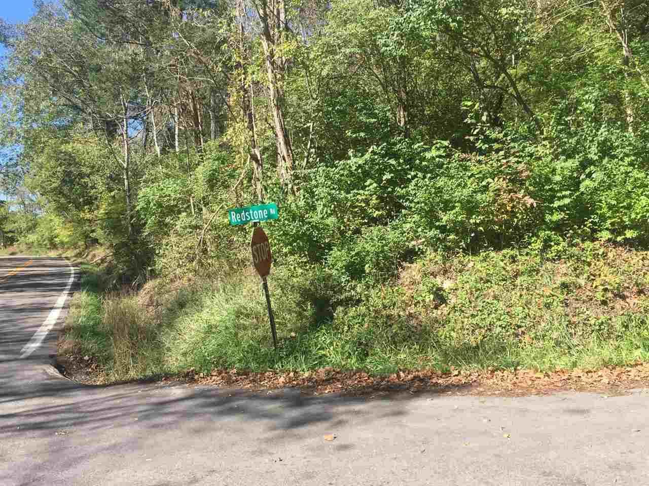 1610 Redstone Road - Photo 1
