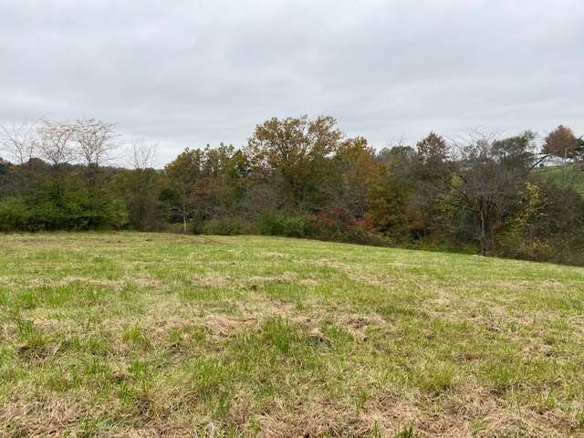 1530 Bladeston Dr., Brooksville, KY 41004 (MLS #543230) :: Mike Parker Real Estate LLC