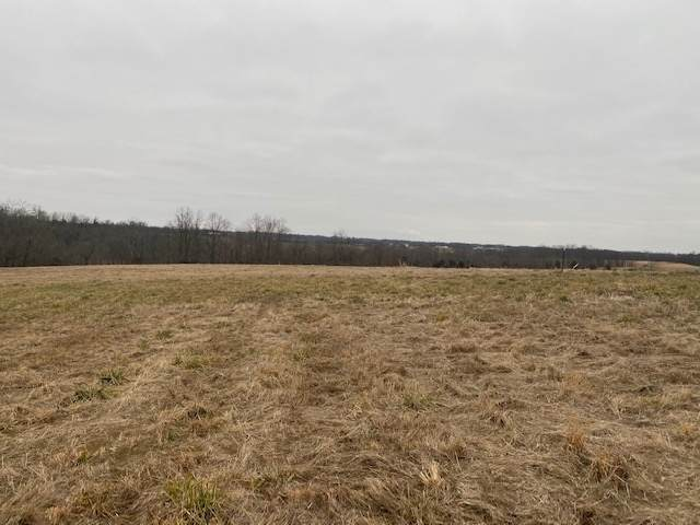 2000 Folsom Jonesville Road, Jonesville, KY 41035 (MLS #545606) :: Mike Parker Real Estate LLC