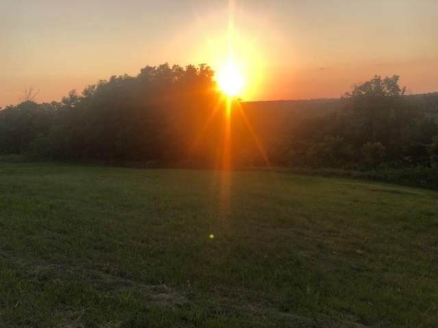 2.75 acres Kerns Lane, Jonesville, KY 41052 (MLS #548383) :: Mike Parker Real Estate LLC