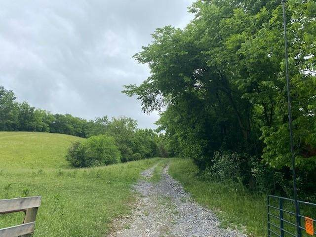 Cane Run Rd., Carlisle, KY 40311 (MLS #550181) :: Caldwell Group