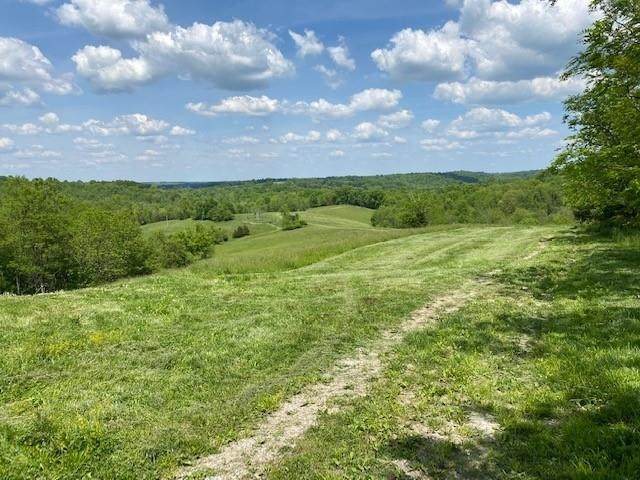 Old 3L, Falmouth, KY 41040 (MLS #550280) :: Caldwell Group