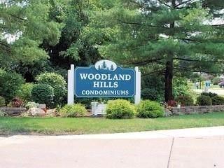 54 Woodland Hills Drive #5, Southgate, KY 41071 (MLS #551337) :: Parker Real Estate Group