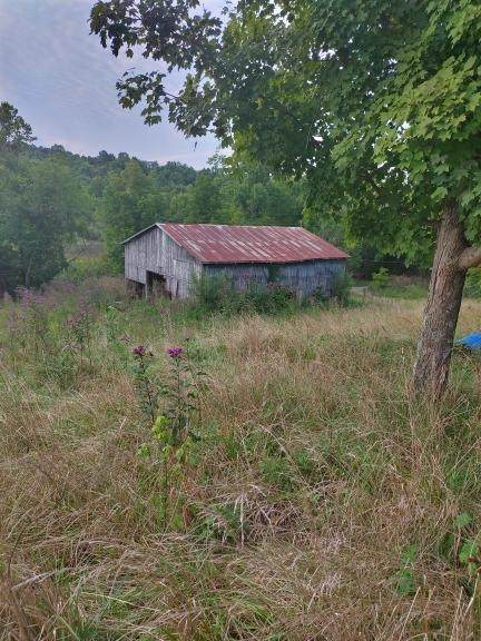 1860 Dixon Road, Sadieville, KY 40370 (MLS #552520) :: The Scarlett Property Group of KW