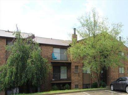 30 Woodland Hills #1, Southgate, KY 41071 (MLS #553944) :: Apex Group