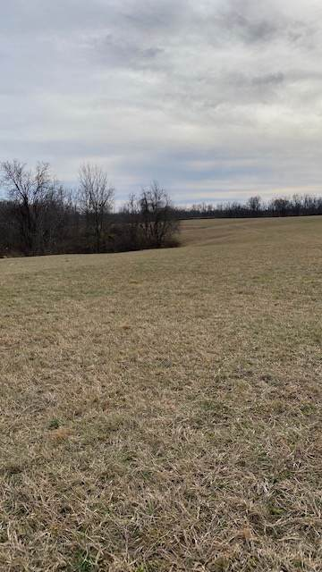 215-5 Peaceful Hollow Road - Photo 1