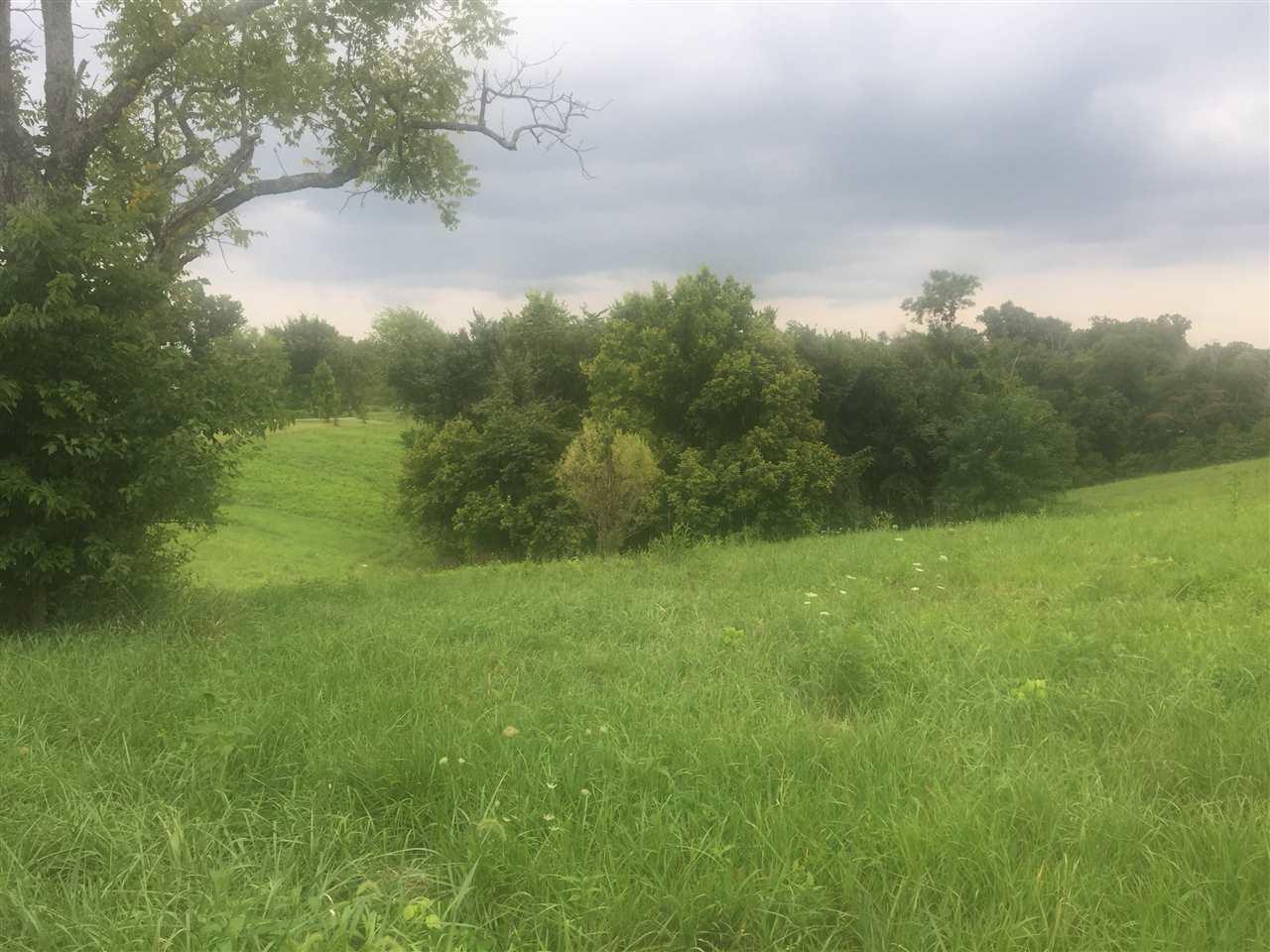8.41 Acres Bethel - Photo 1
