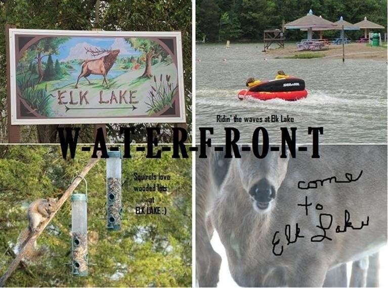 LOT 64 @ Elk Lake Resort Rd - Photo 1