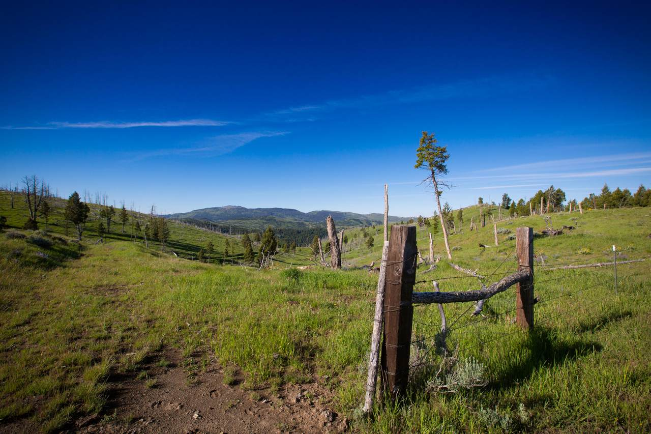 88 Upper Greyson Creek Road - Photo 1