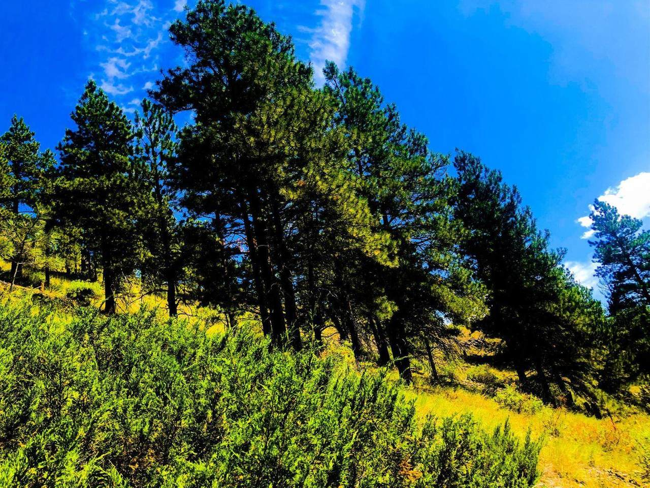 73 Sugarloaf Mountain Lane - Photo 1