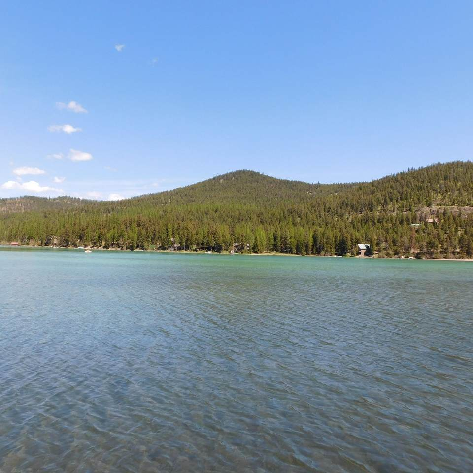 3175* Ashley Lake Road - Photo 1