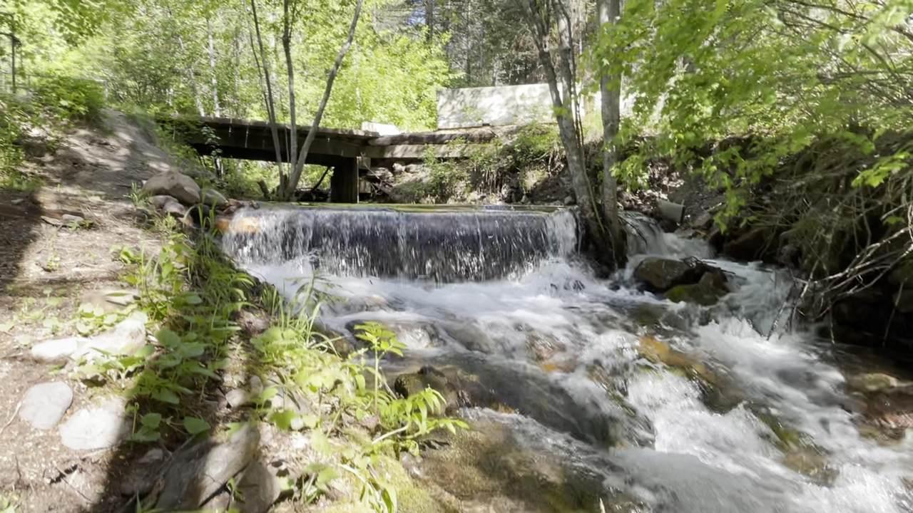 2783 Schley Creek Road - Photo 1