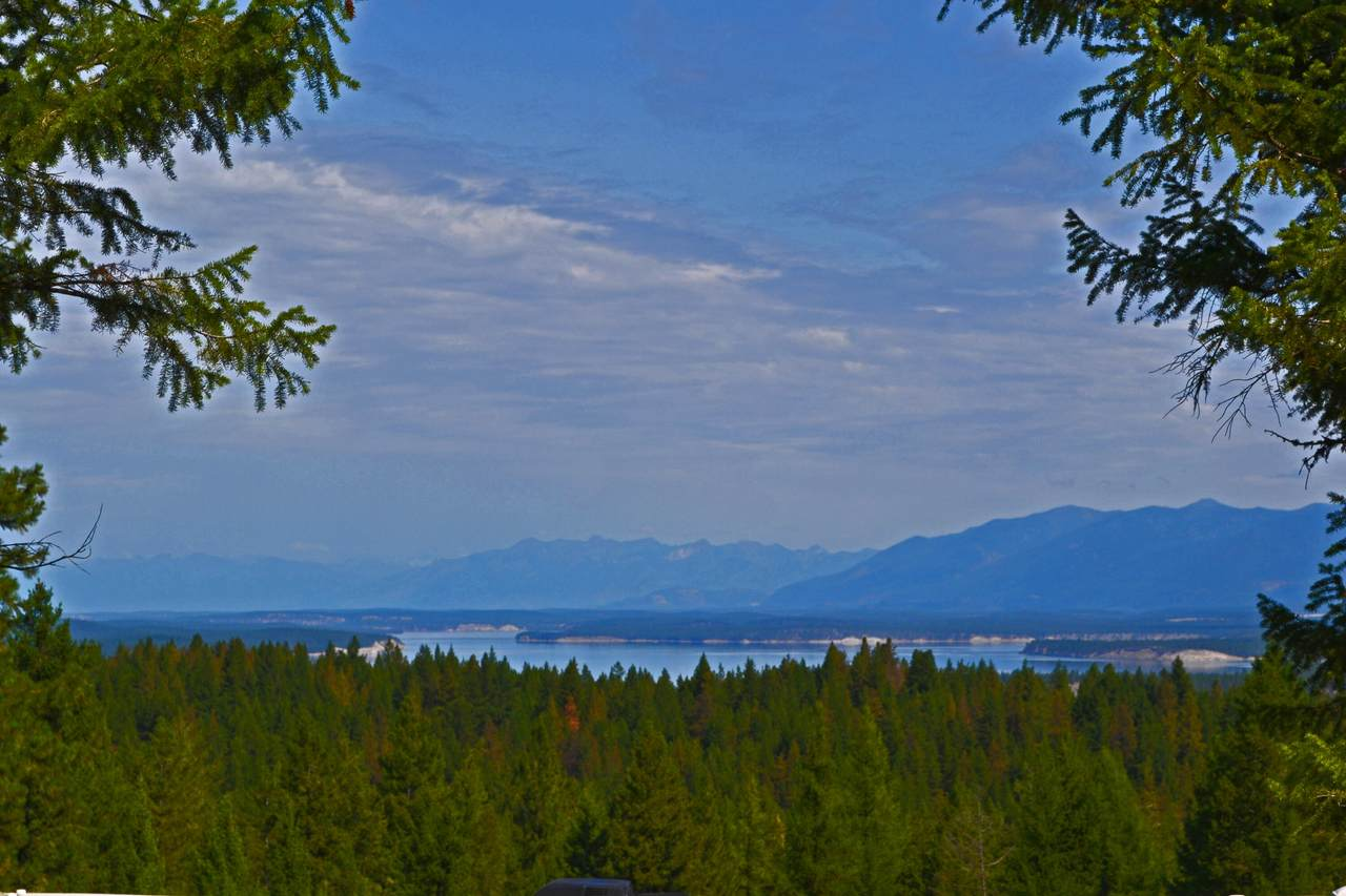 6869 Black Lake Road - Photo 1