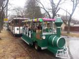 Montana Trolley Co. - Photo 26