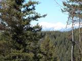 205 Timberjack Trail - Photo 1