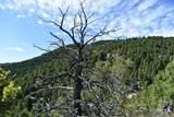 Tbd Meadow Gulch Road - Photo 1