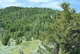 Tbd Meadow Gulch Road - Photo 5