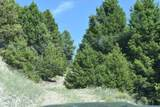 Tbd Meadow Gulch Road - Photo 6