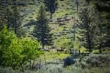 88 Upper Greyson Creek Road - Photo 7