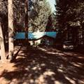 59 Cougar Meadow Drive - Photo 1