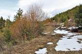 482 Mclaughlin Creek Road - Photo 37