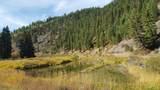 Nhn Prospect Creek Road - Photo 1