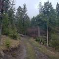 2306 Hidden Canyon Road - Photo 33