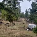 2306 Hidden Canyon Road - Photo 6