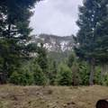 2306 Hidden Canyon Road - Photo 8