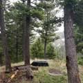 2306 Hidden Canyon Road - Photo 9