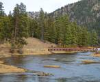 2049 River Watch Trail - Photo 6