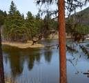 2049 River Watch Trail - Photo 7