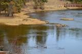 2049 River Watch Trail - Photo 8