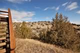 35 Hayfield Loop Trail - Photo 43