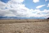 35 Hayfield Loop Trail - Photo 44