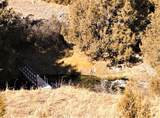 35 Hayfield Loop Trail - Photo 45