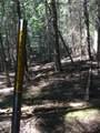 399 Pilgrim Creek Road - Photo 20