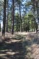 3125-3133 Mt Highway 206 - Photo 129