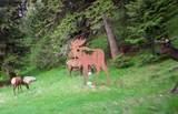 100 Pony Creek Road - Photo 43