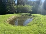 2226 Upper Idaho Gulch Road - Photo 49