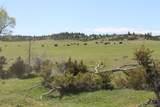 876 Lower Sweet Grass Road - Photo 59