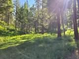 350 Colorado Gulch Road - Photo 8