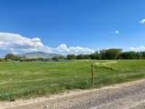 Tbd Cotton Willow-Diamond T Ranch - Photo 3