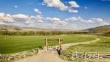Tbd Cotton Willow-Diamond T Ranch - Photo 5