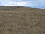 1371 Whoop Up Trail - Photo 11