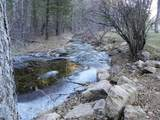 2290 Little Wolf Creek Road - Photo 50