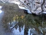 2290 Little Wolf Creek Road - Photo 51