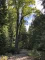 399 Pilgrim Creek Road - Photo 47