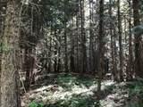 399 Pilgrim Creek Road - Photo 48