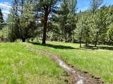 1270 Nevada Creek Ranch Drive - Photo 6